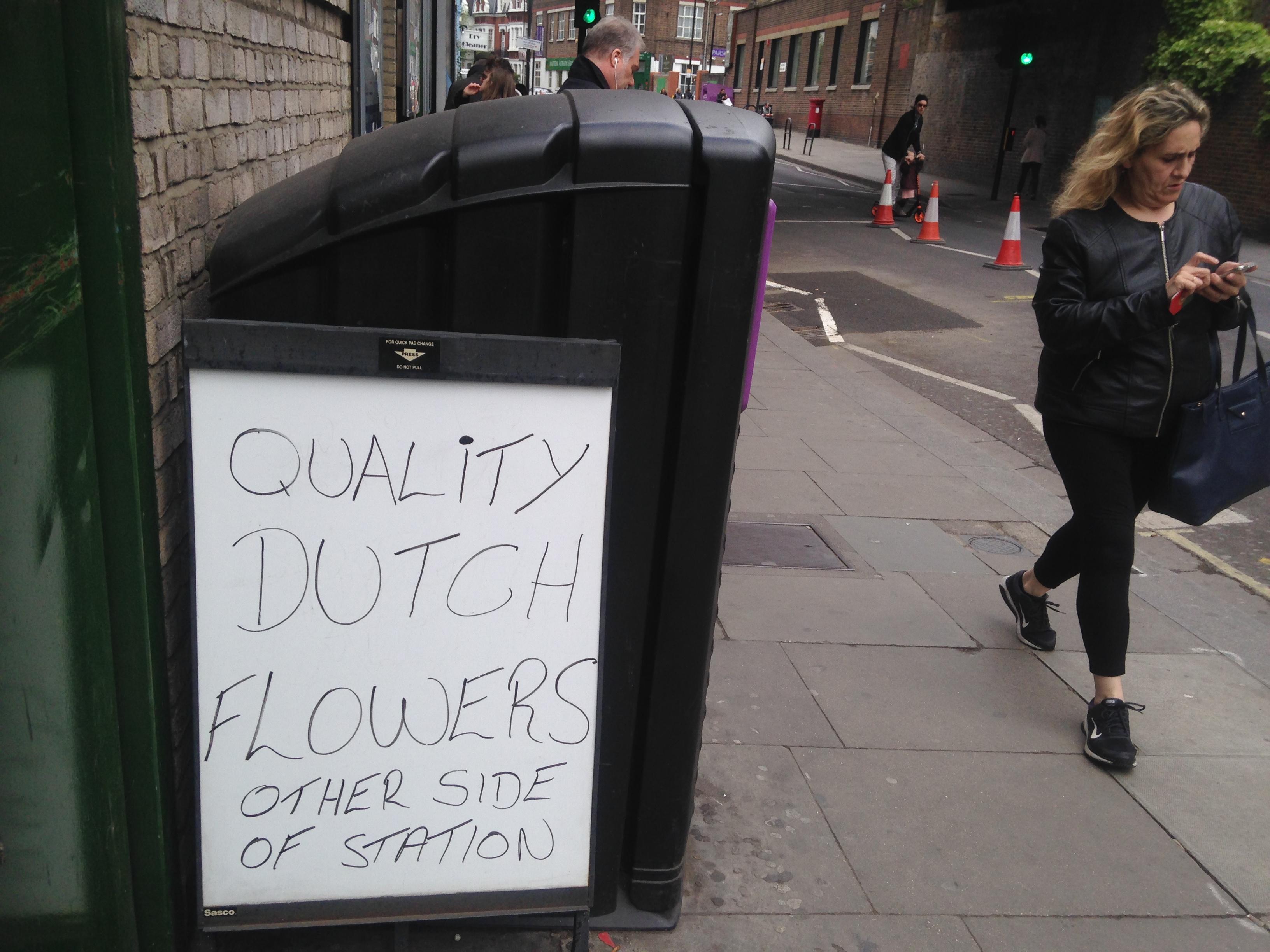 quality dutch flowers